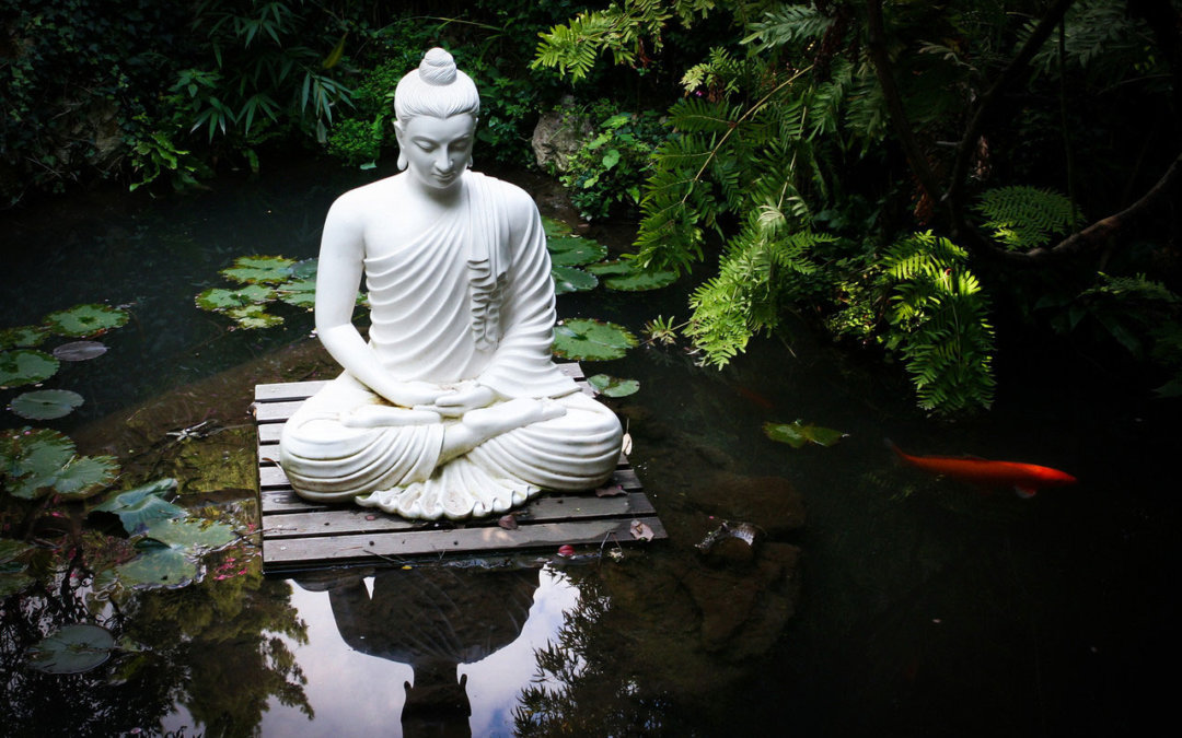 The Wisdom Pond: From Leadership to Awakening